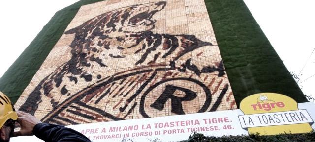 Toasteria Tigre Milano