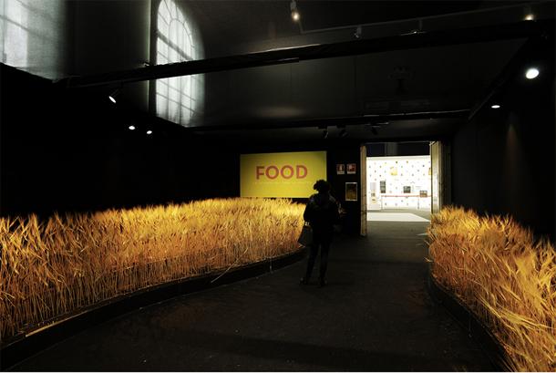 FOOD. Cibo: dai semi al piatto