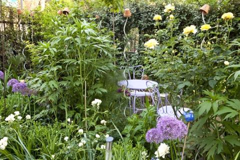 Piccolo giardino privato di Gaetano Zoccali a Niguarda_foto di Matteo Carassale per Gardenia_HR
